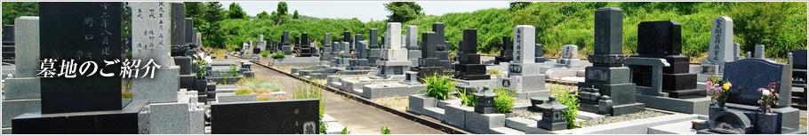 墓地のご紹介