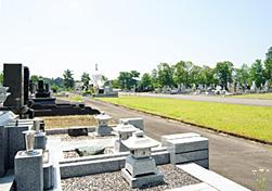 東山墓地公園の自然