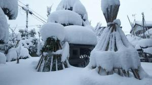 唯敬寺積雪①