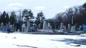 H28墓地公園の雪どけ②
